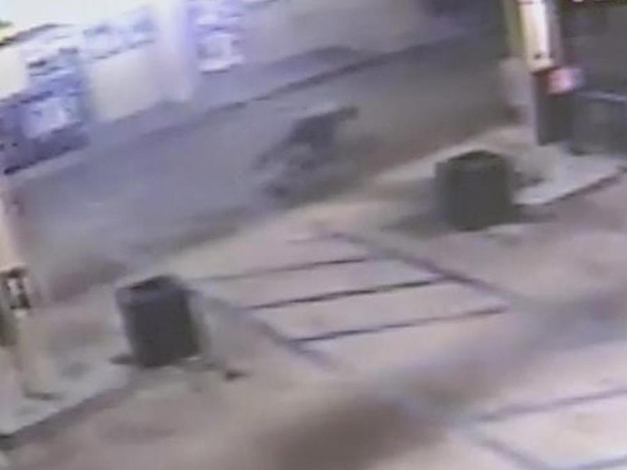 balacera en estacion de policia