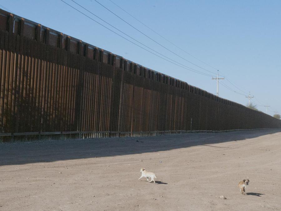 abre licitacion para el muro
