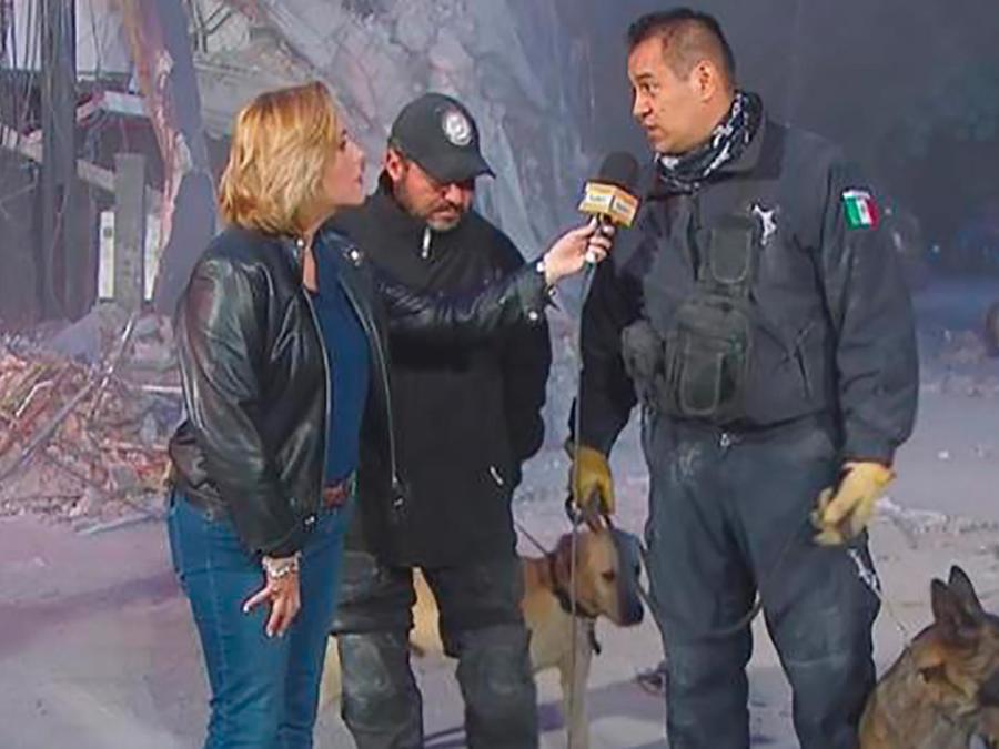 Los especialistas en rescates nos explican cómo trabajan los perros de búsqueda