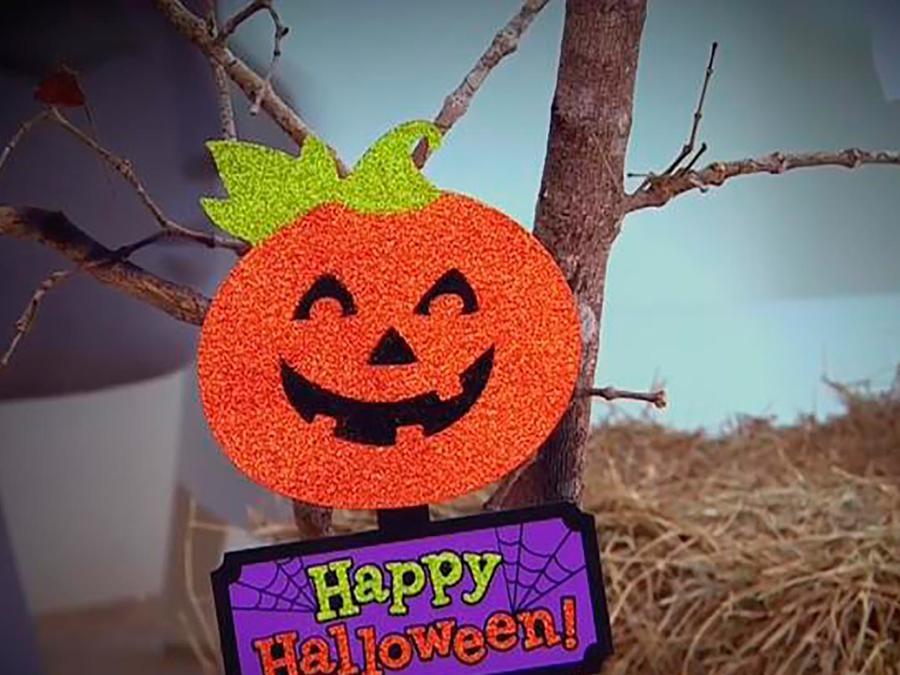 Martín Amado ayudó a Adamari López a decorar su casa para tener un Halloween perfecto