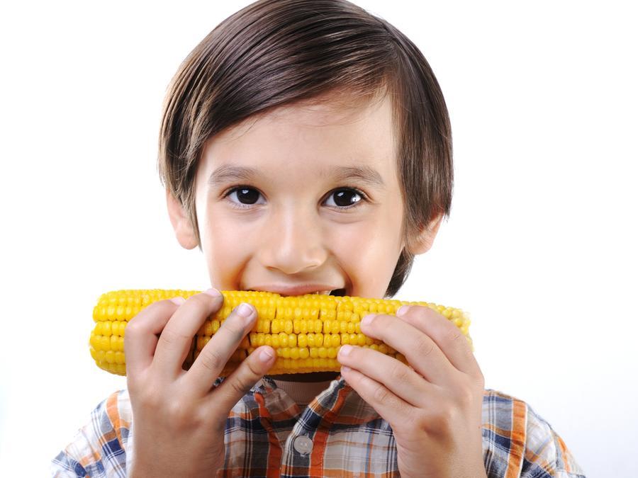 Comidas saludables para los niños