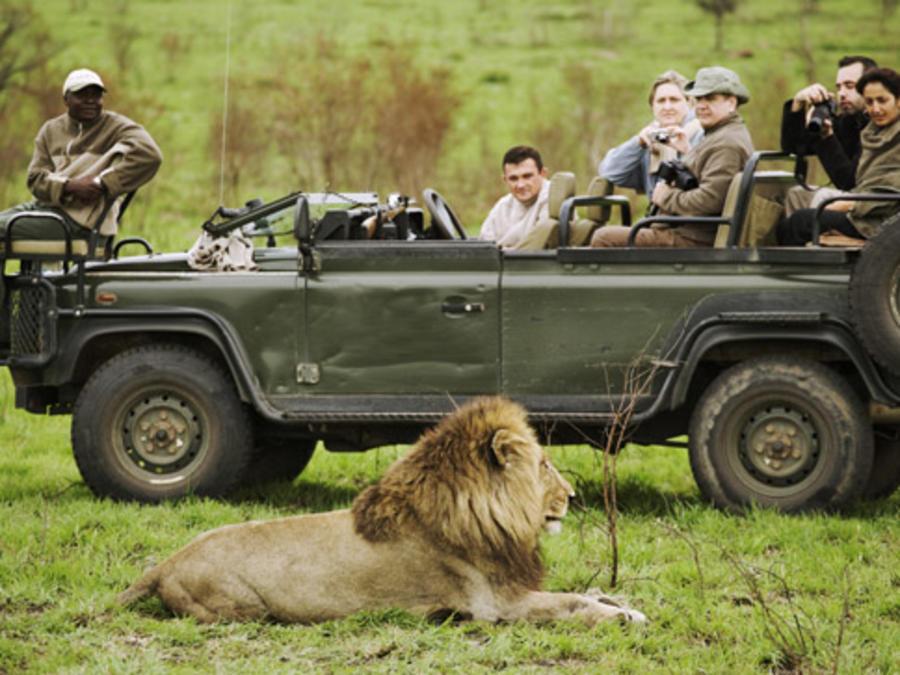 Descubre el safari más grande de los Estados Unidos
