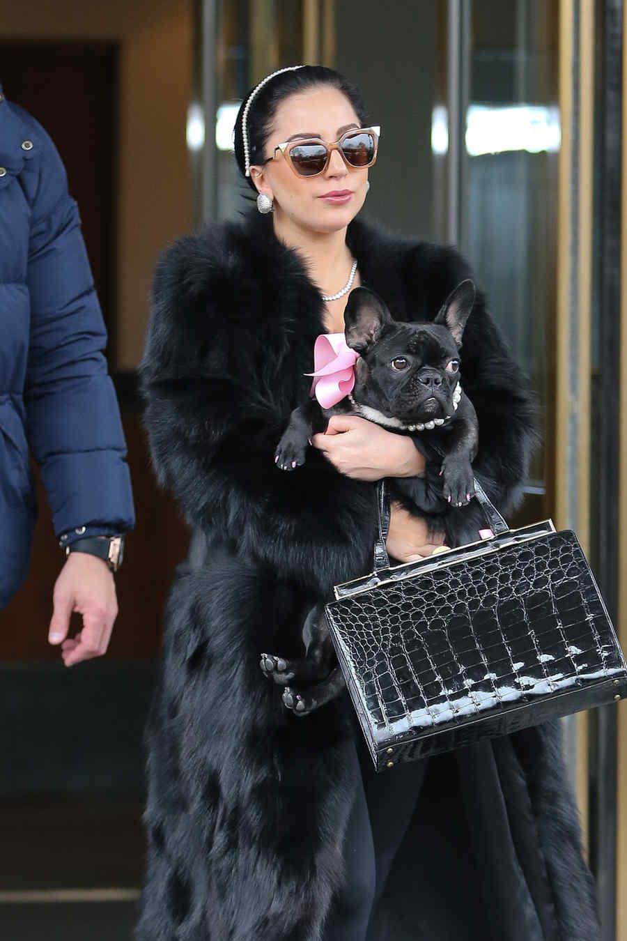 Lady Gaga y su perro Asia