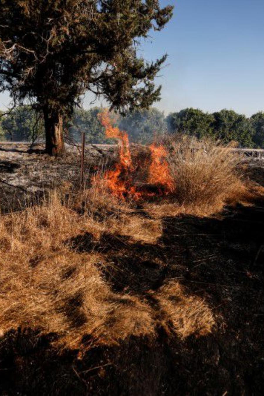 En la imagen se ve un campo en llamas después de que los palestinos en Gaza lanzaran globos incendiarios sobre la frontera entre Gaza e Israel, cerca de Nir Am, el 15 de junio de 2021.