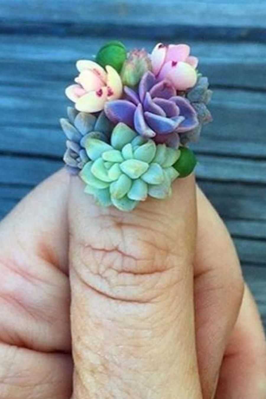 Nail art de plantas suculentas