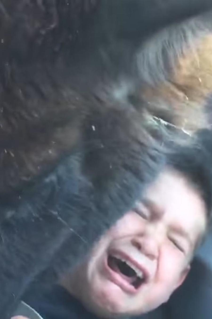 Este niño se vivió un divertido momento de terror