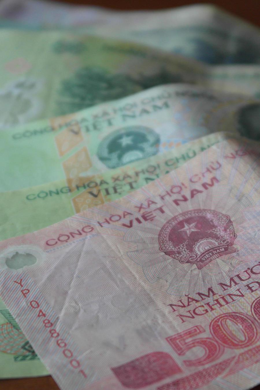 dinero vietnamita