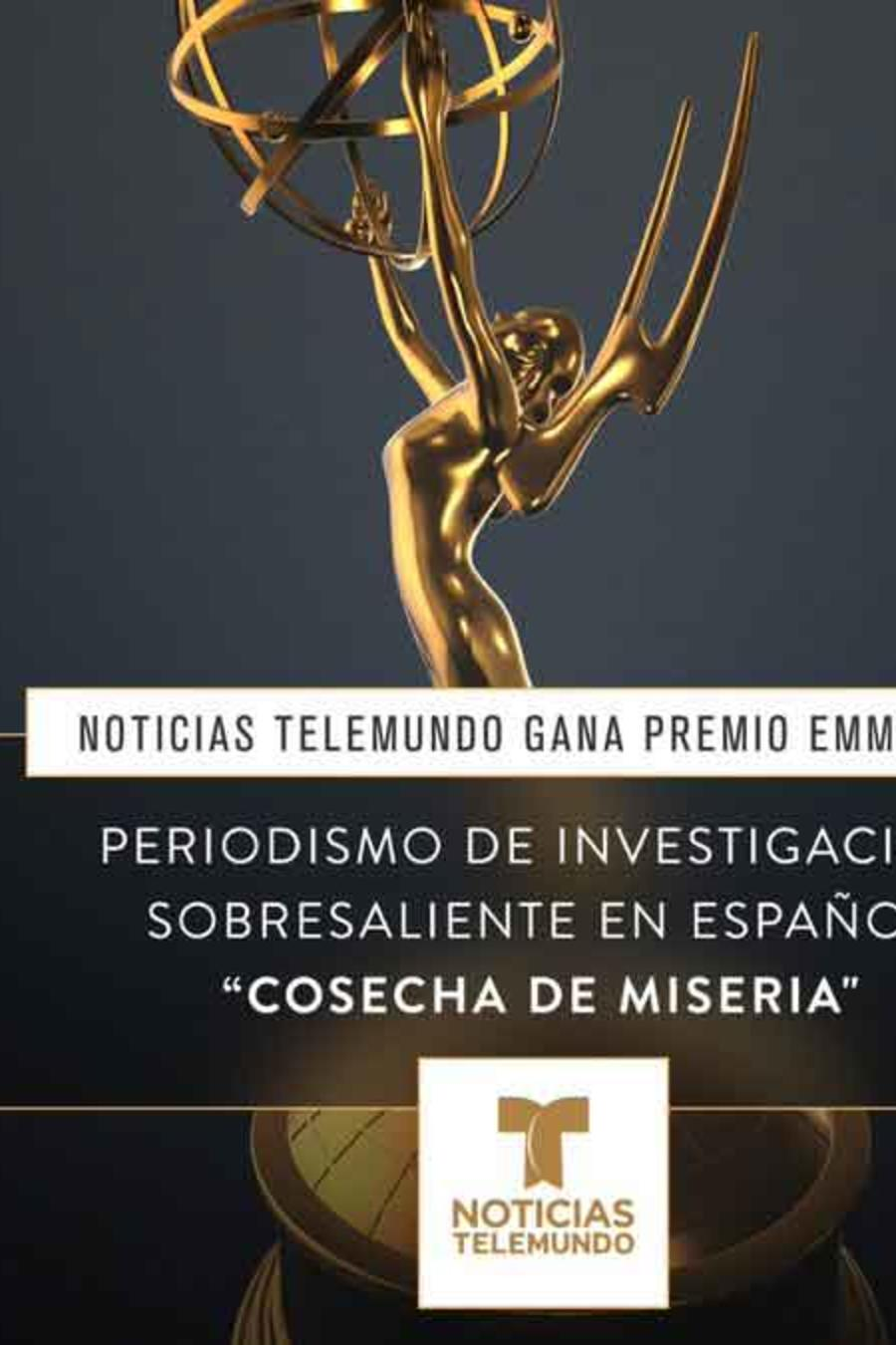 """Gráfico del Emmy que ganó Noticias Telemundo por el documental """"Cosecha de Miseria"""""""