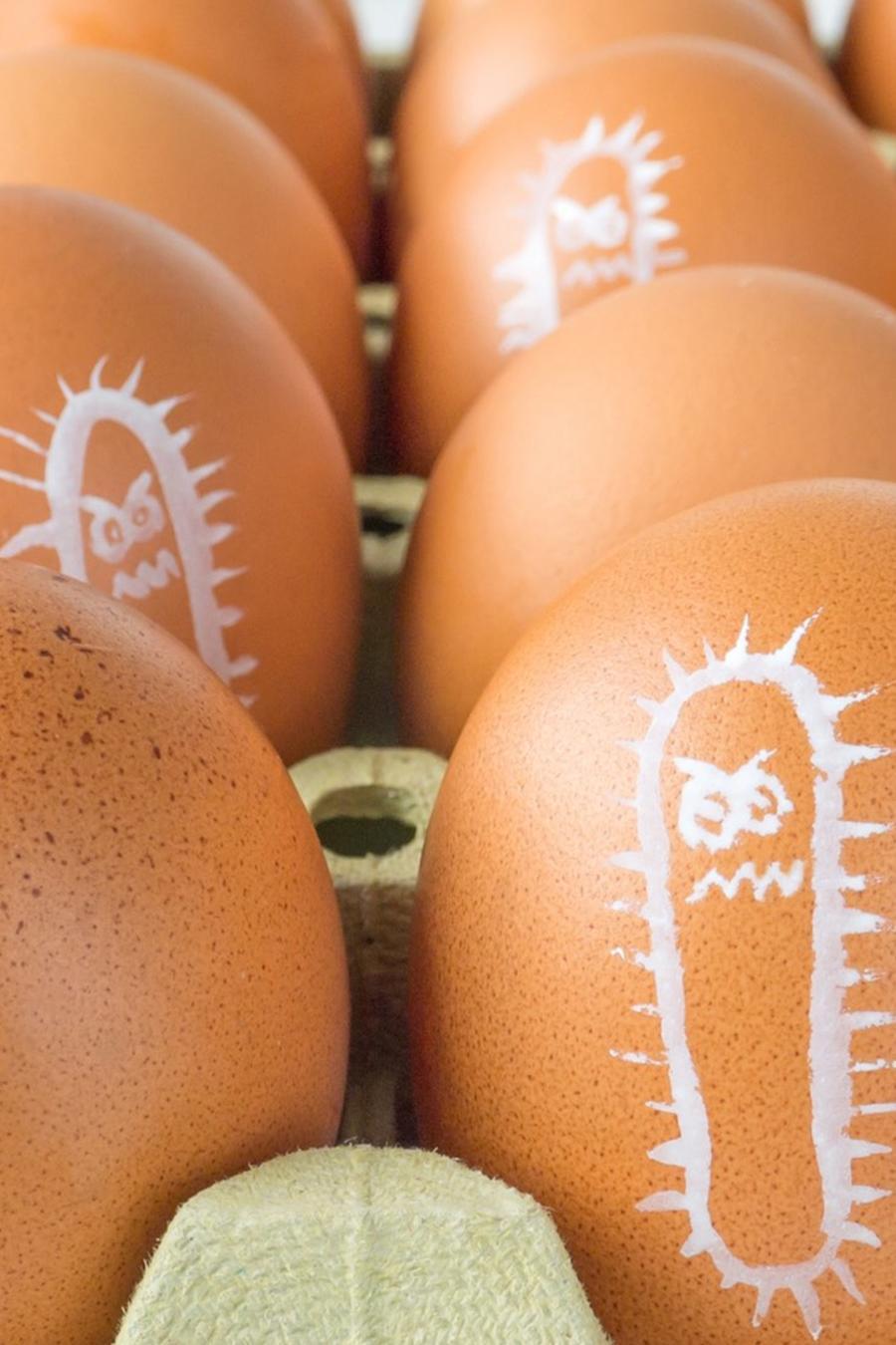 Huevos con dibujo de bacteria salmonela