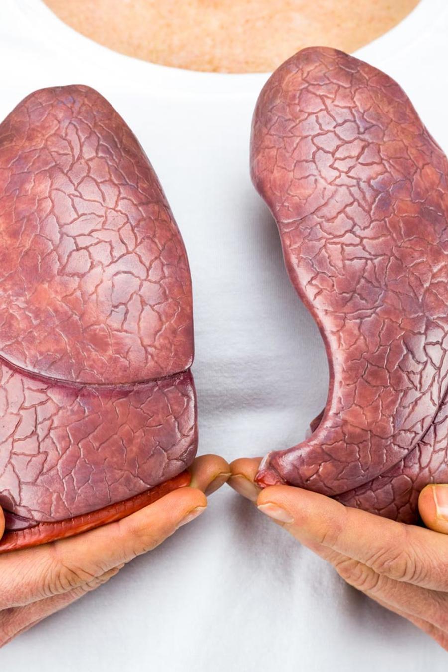 Mujer sosteniendo pulmones de plástico