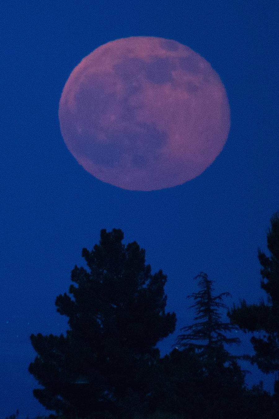 Luna llena rosada de noche
