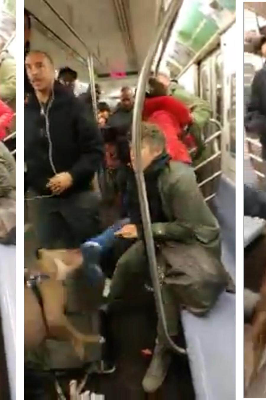 ataque de pitbull en el metro