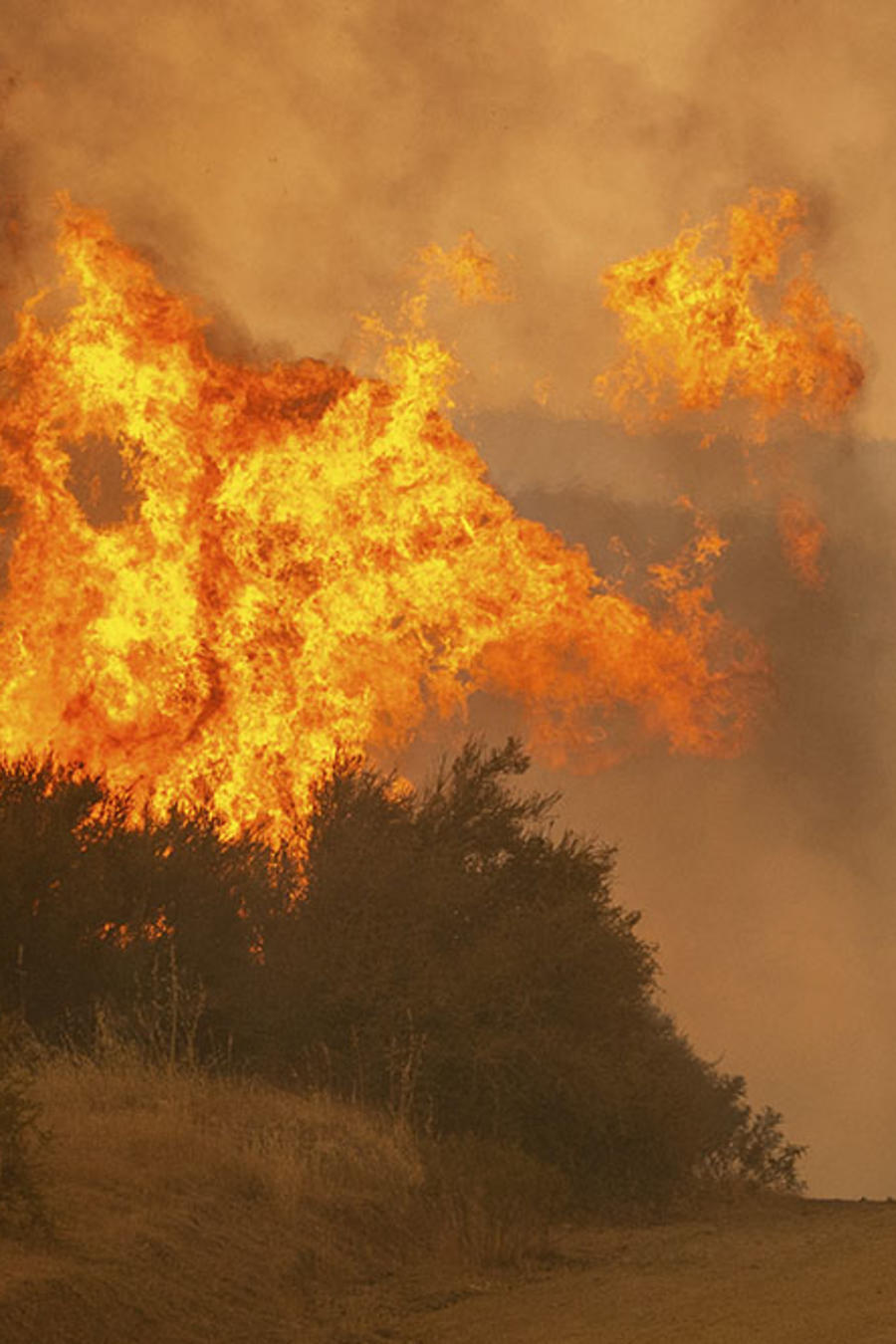 Un vehículo transita cerca de las llamas del incendio forestal que azota a Clearlake Oaks, en California.