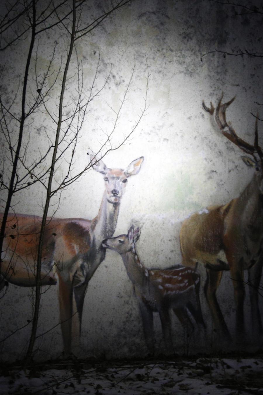 Un graffiti con una familia de ciervos, en una imagen de archivo.
