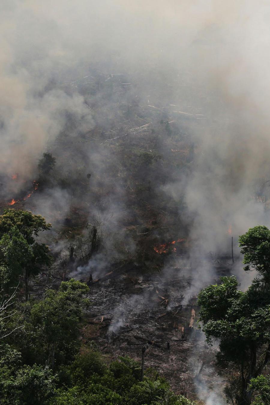 Incendio intencional en el Amazonas para limpiar el terreno para agricultura