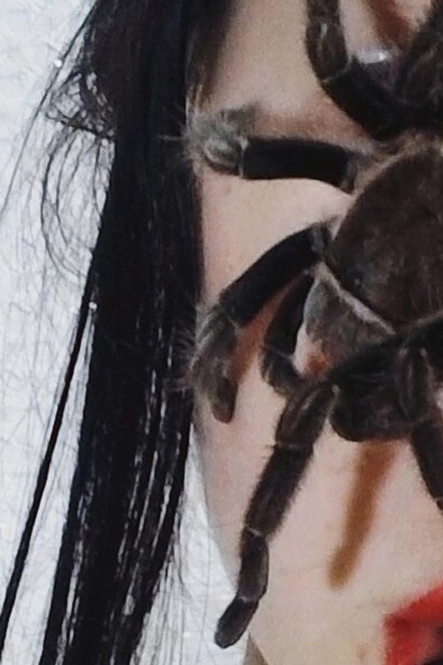 Una araña en la cara de una mujer