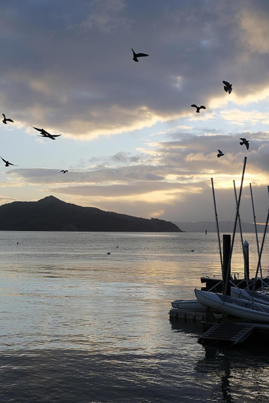 Imagen de la Angel Island desde Sausalito, en California.