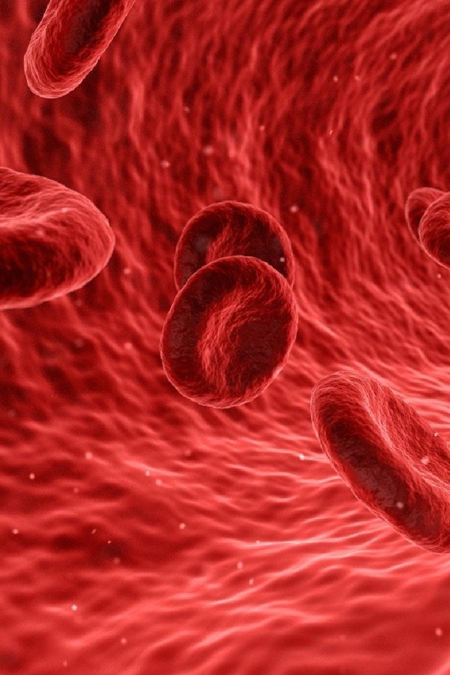 Tipo de sangre coronavirus