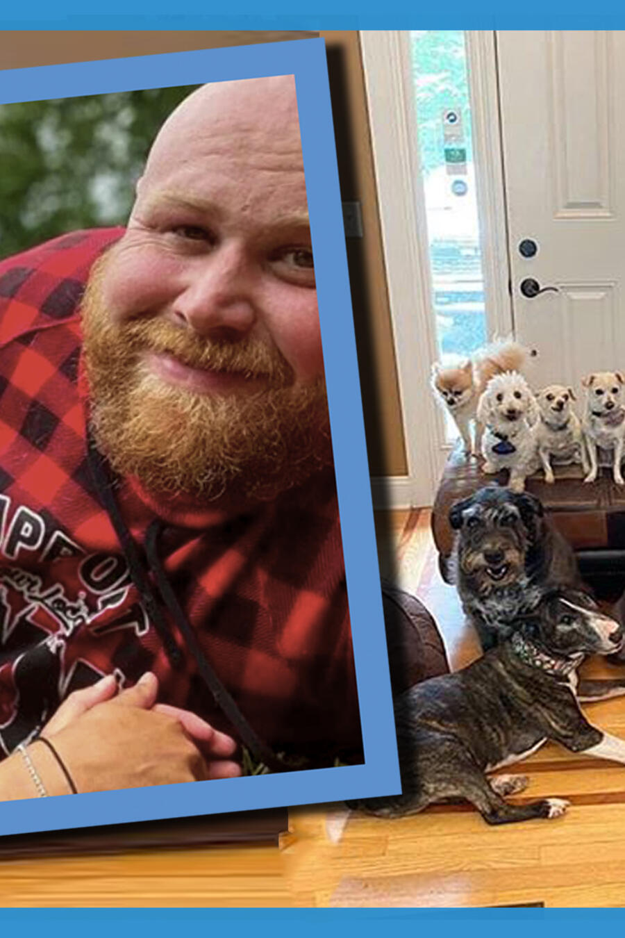 Perritos adopción discapacitados