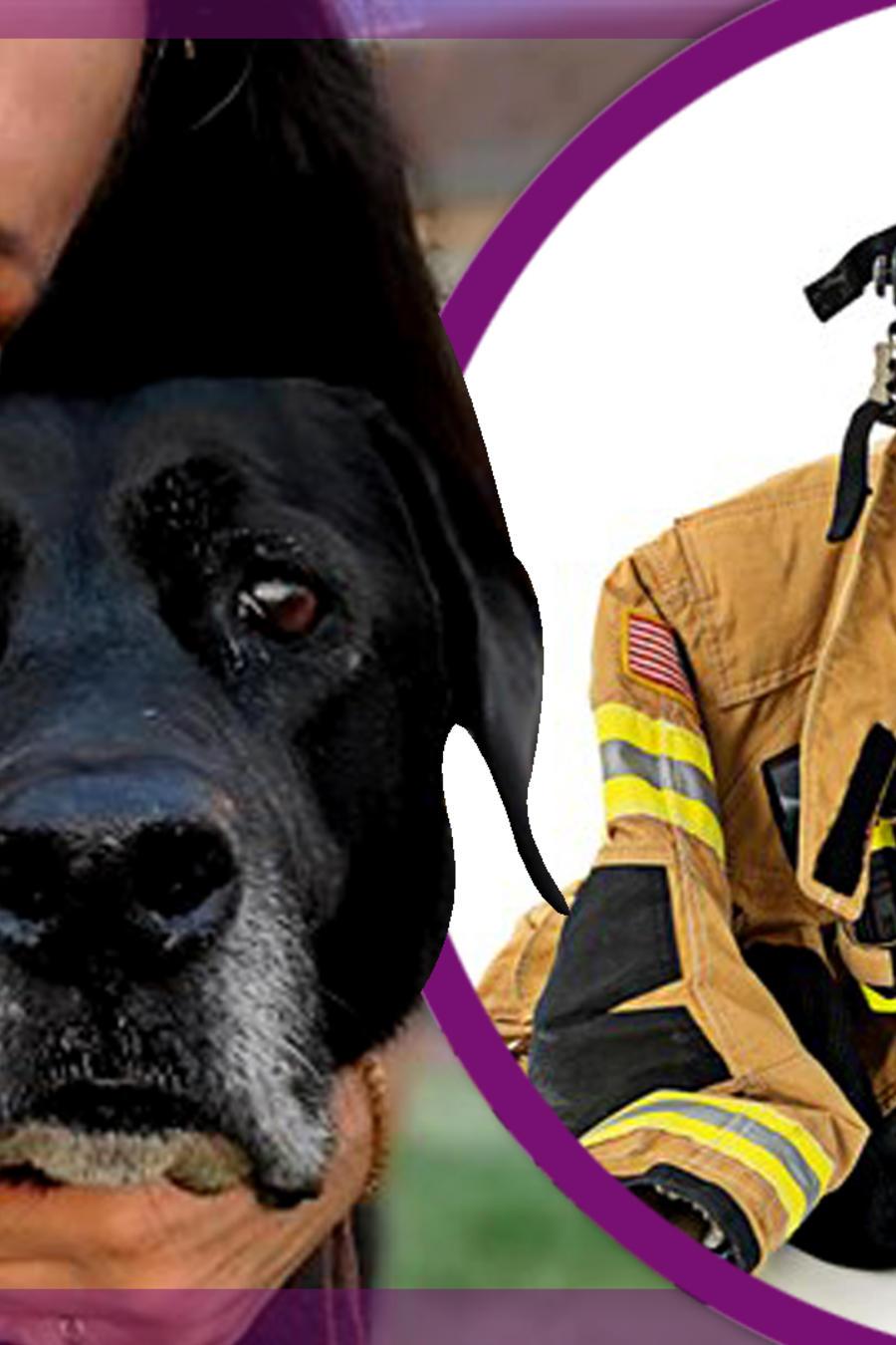 Debra Jo Chiapuzio máscara de óxigeno para mascotas