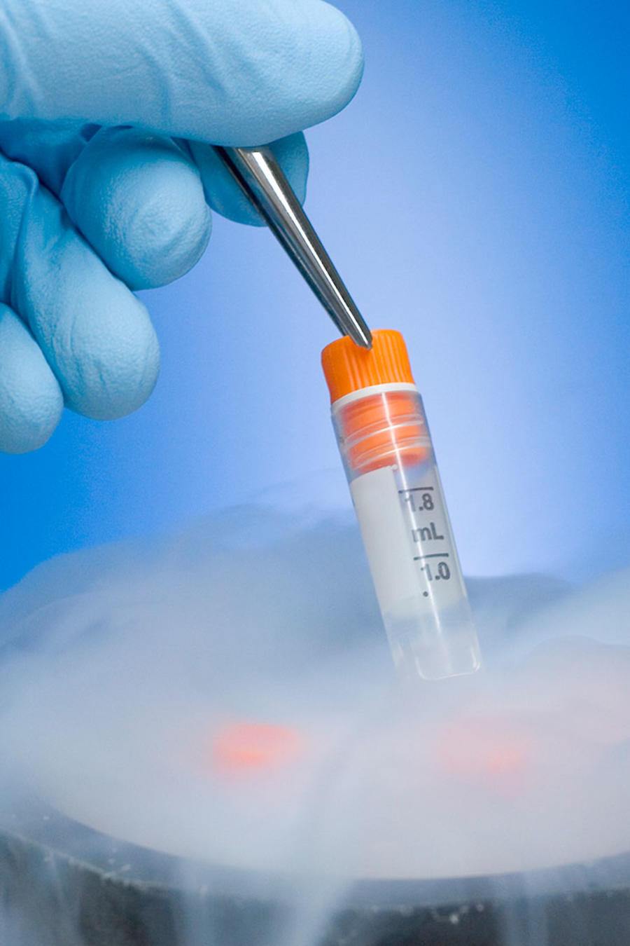 Embrión congelado