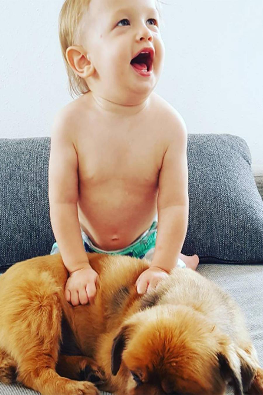 Bebé monta a su perro