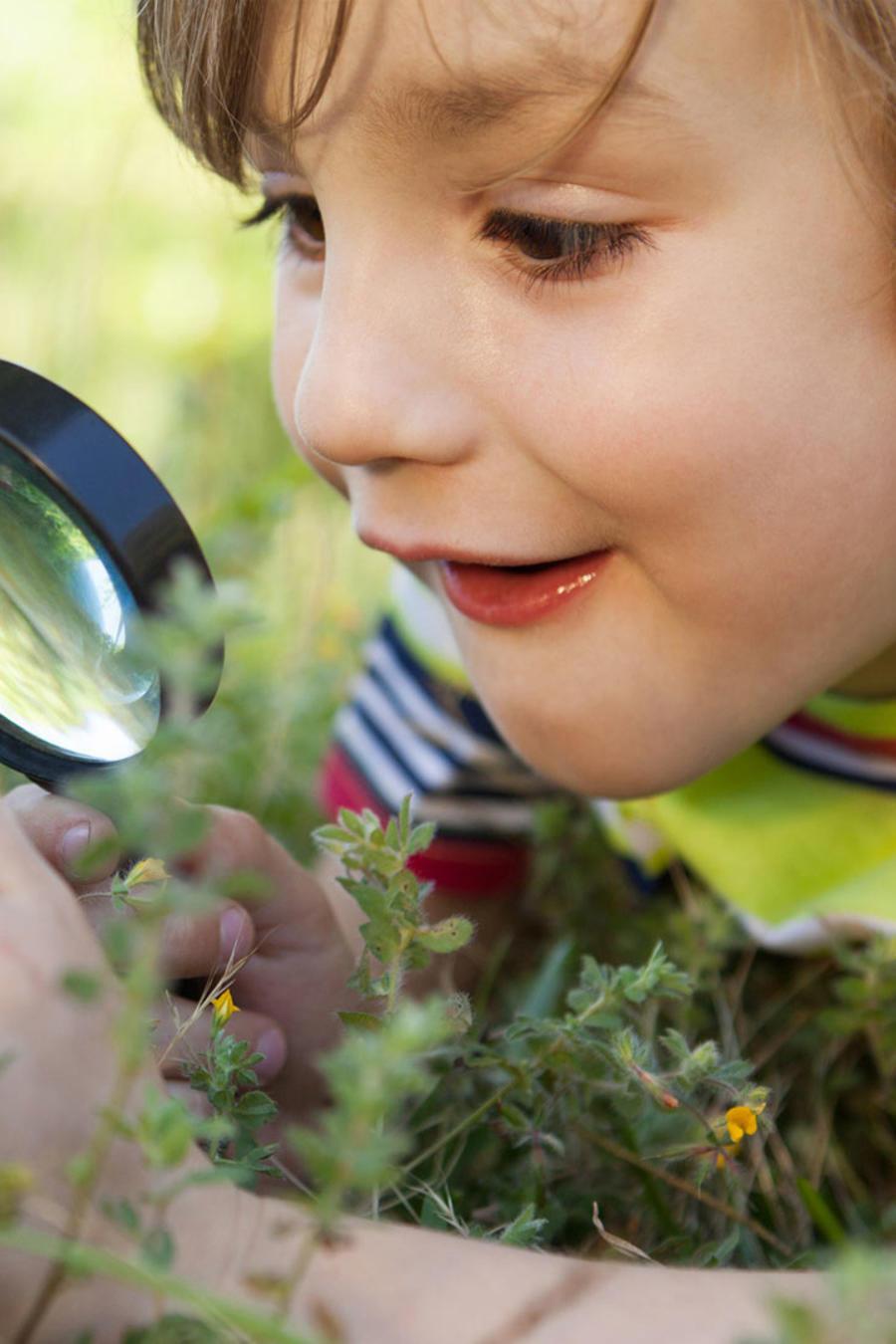 Niño mirando con lupa el césped