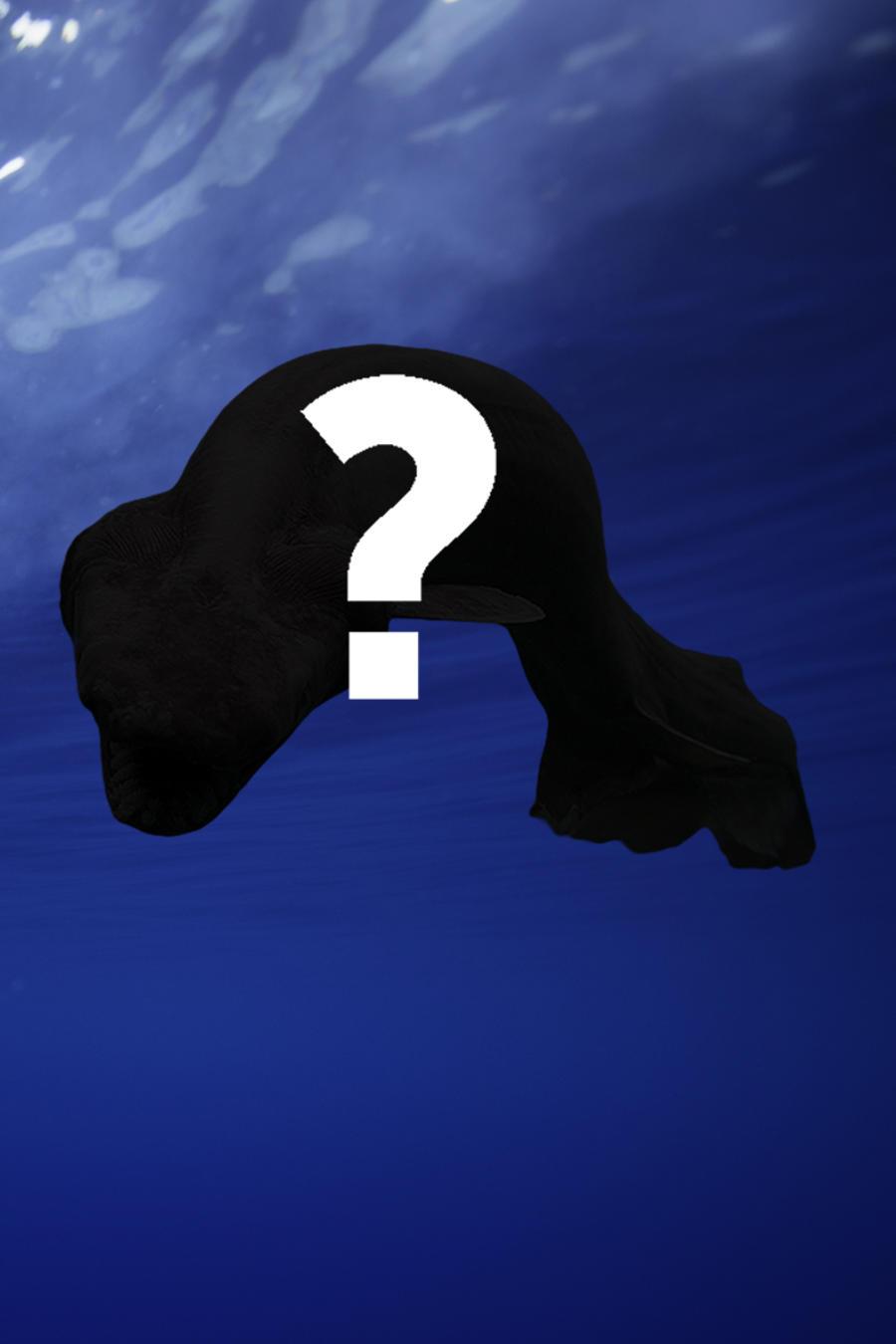 Hallaron vivo a un fósil viviente en las aguas profundas
