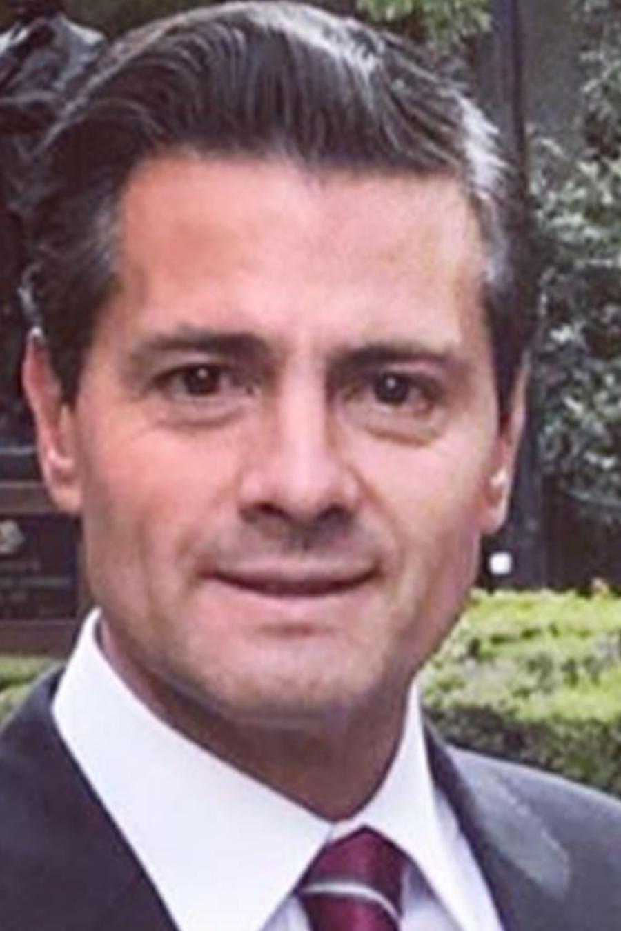 Enrique Peña Nieto y Diego Peña