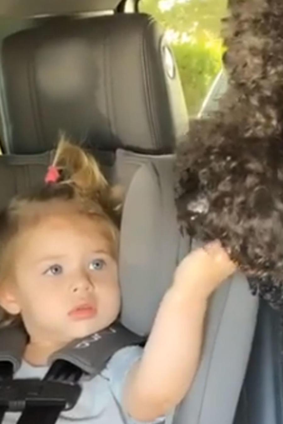 Luna y su perro Oreo