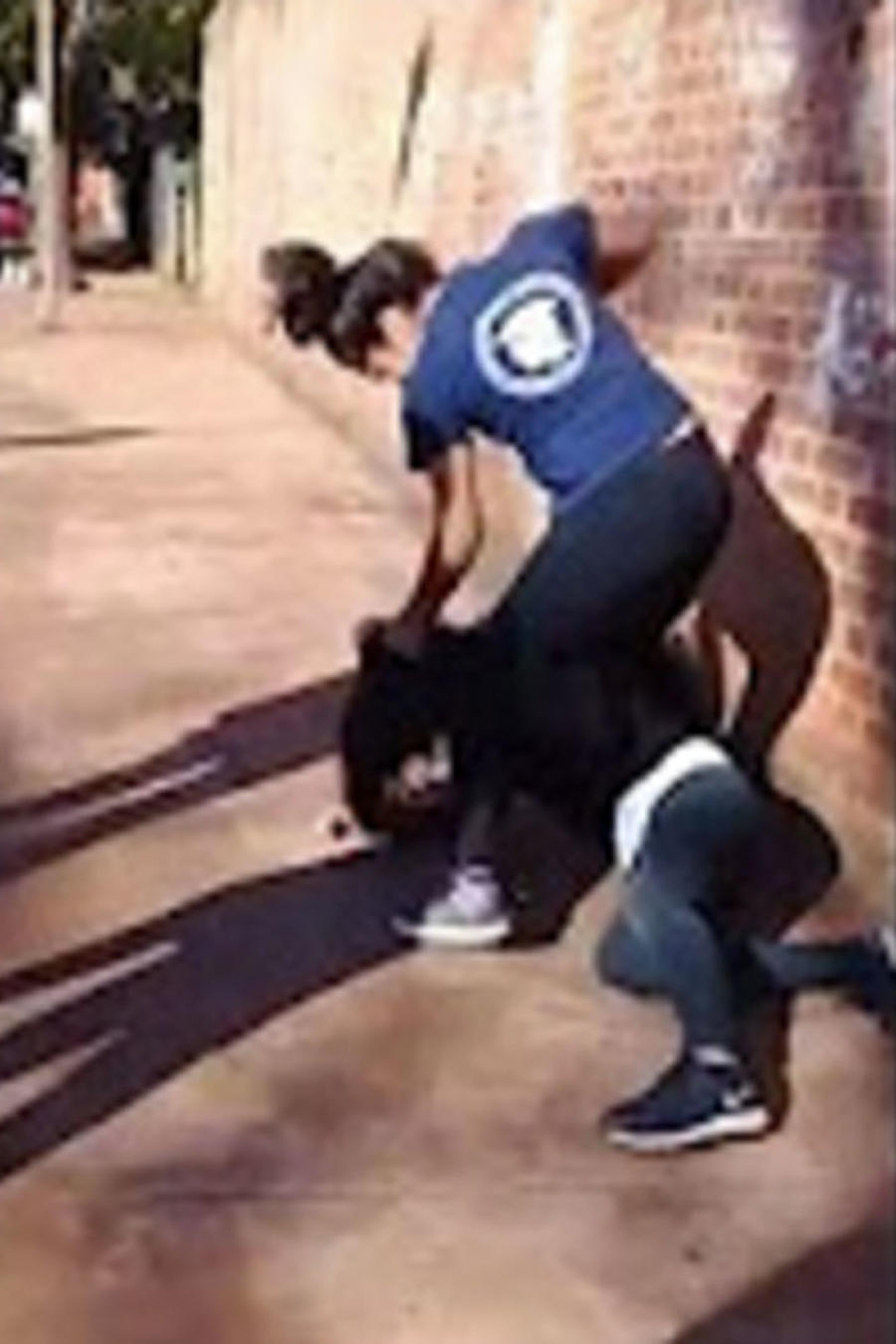 Dos estudiantes se encienden a golpes (VIDEO)