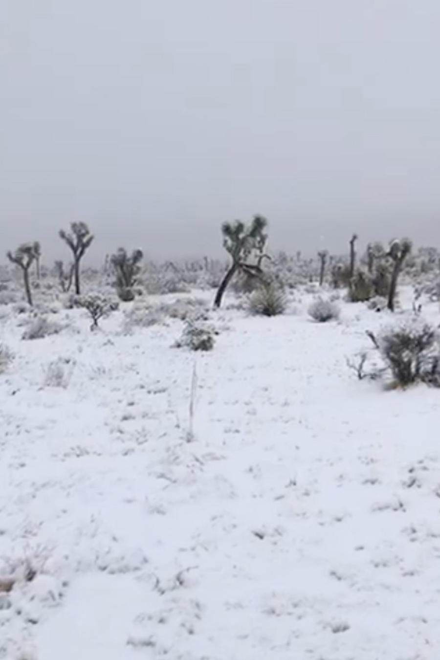 Nieve en California este 26 de diciembre.