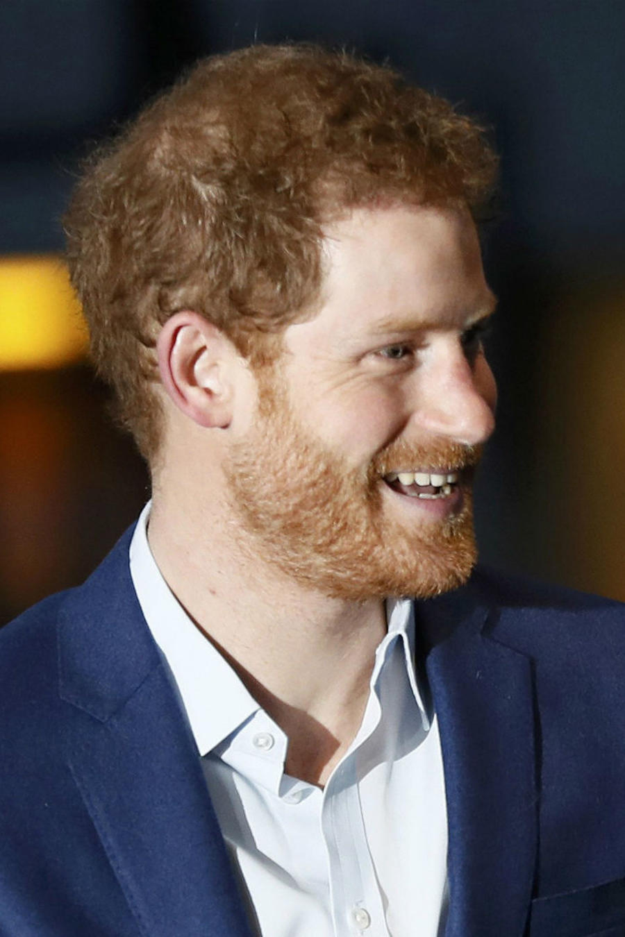 Príncipe Harry de perfil