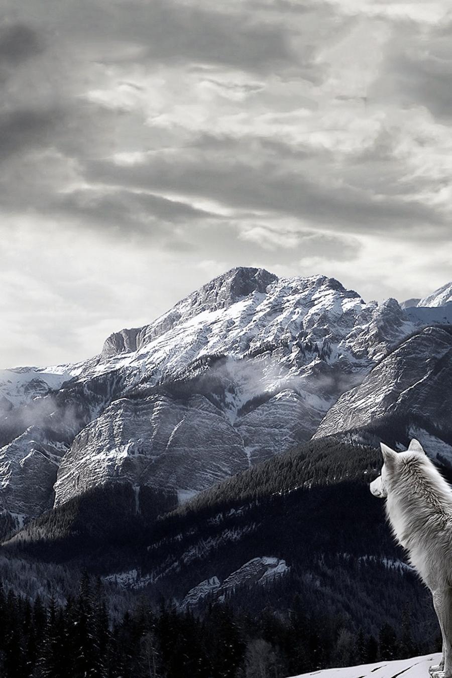 wolf-mountain