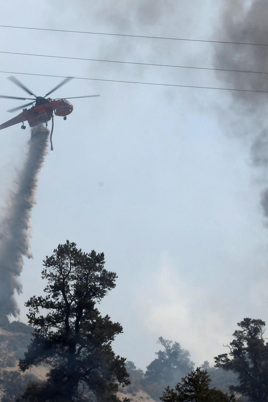 preocupan incendios forestales