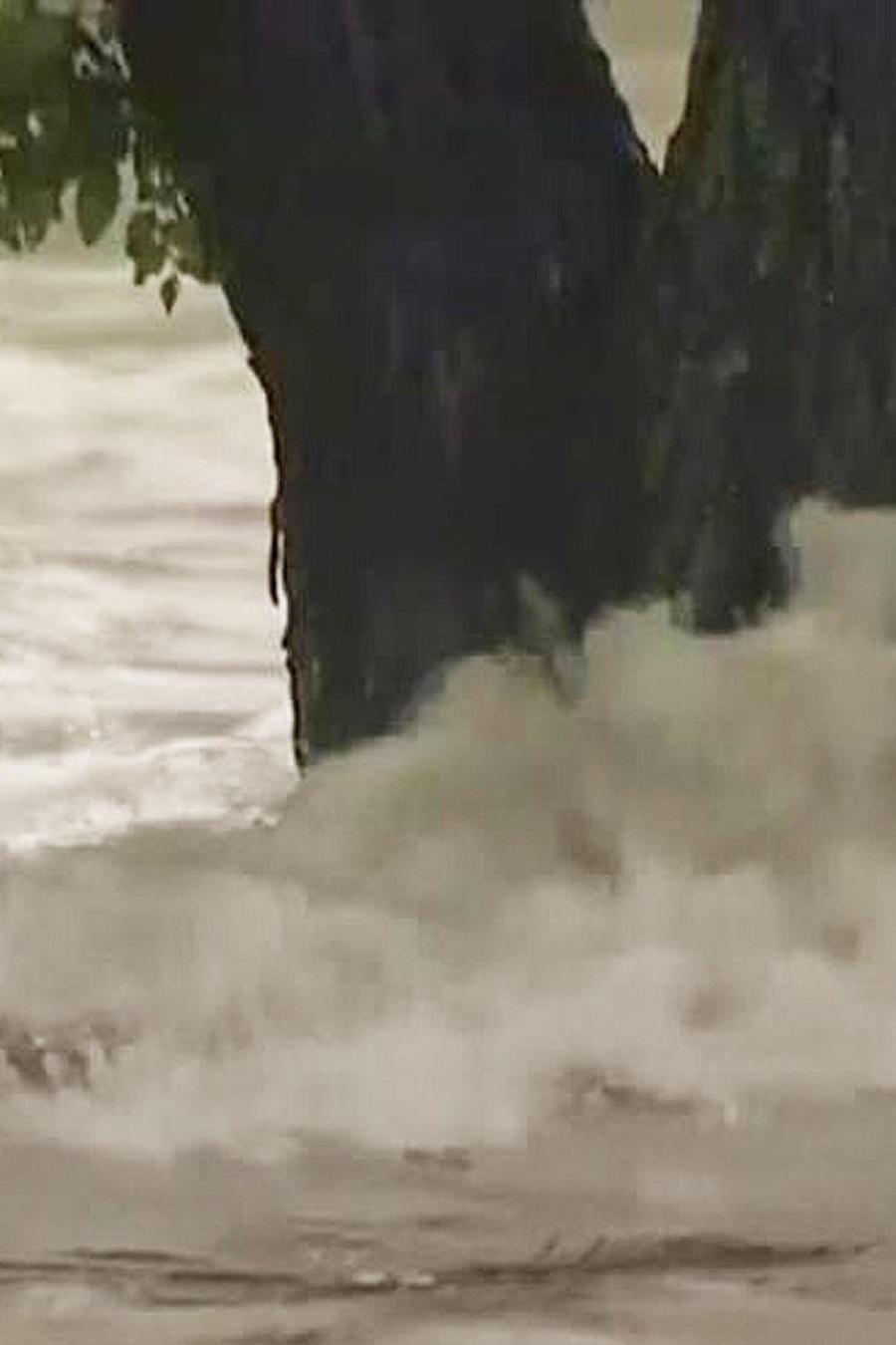 texas afectada por lluvias