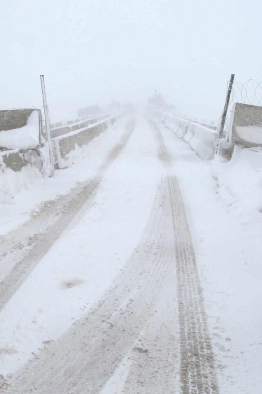 pronostican frio artico