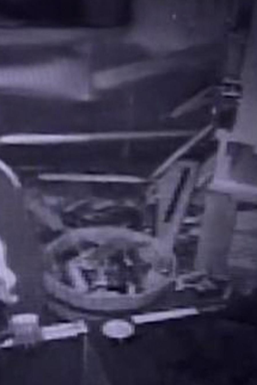 ladrones roban tienda de armas