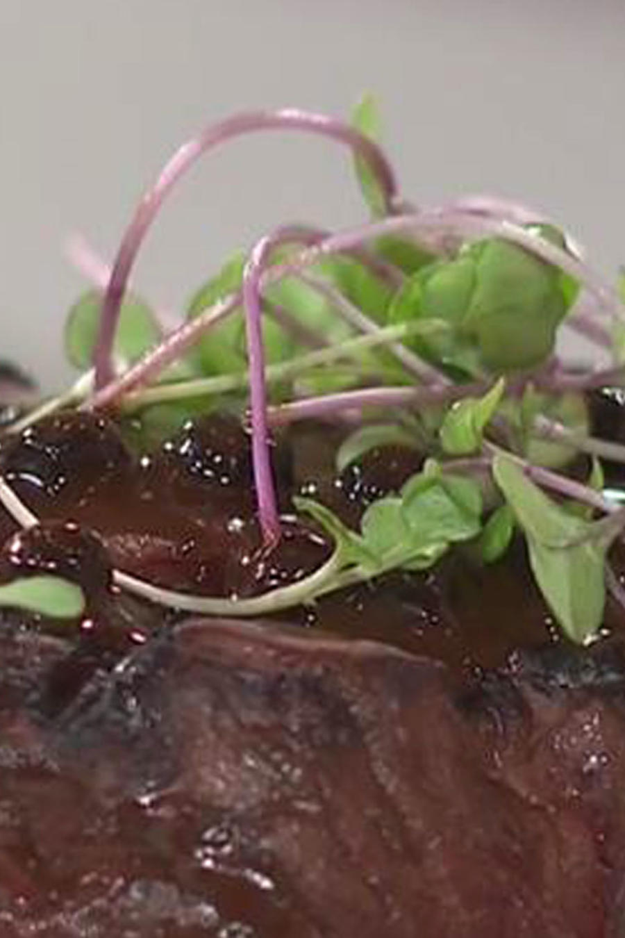 Receta de cocina: Carne con Salsa de Chocolate y Pimienta