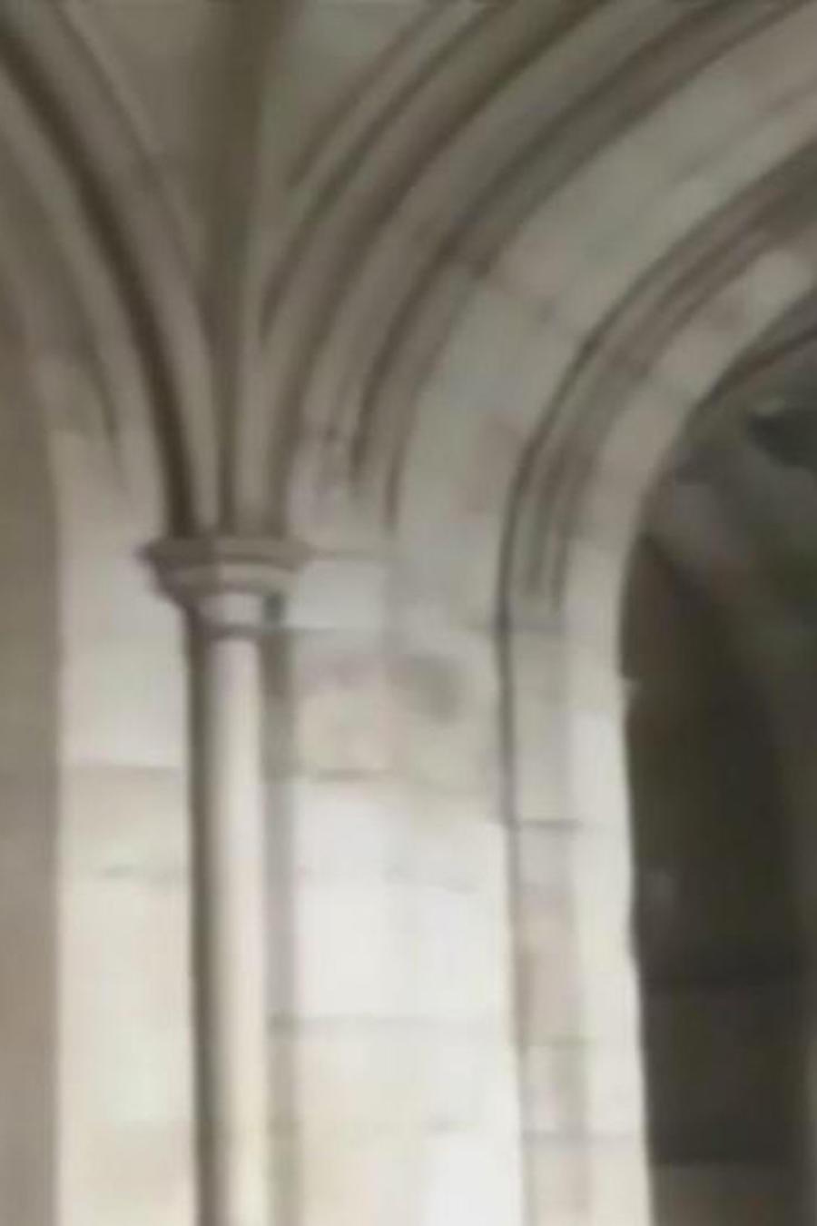 panico en el parlamento