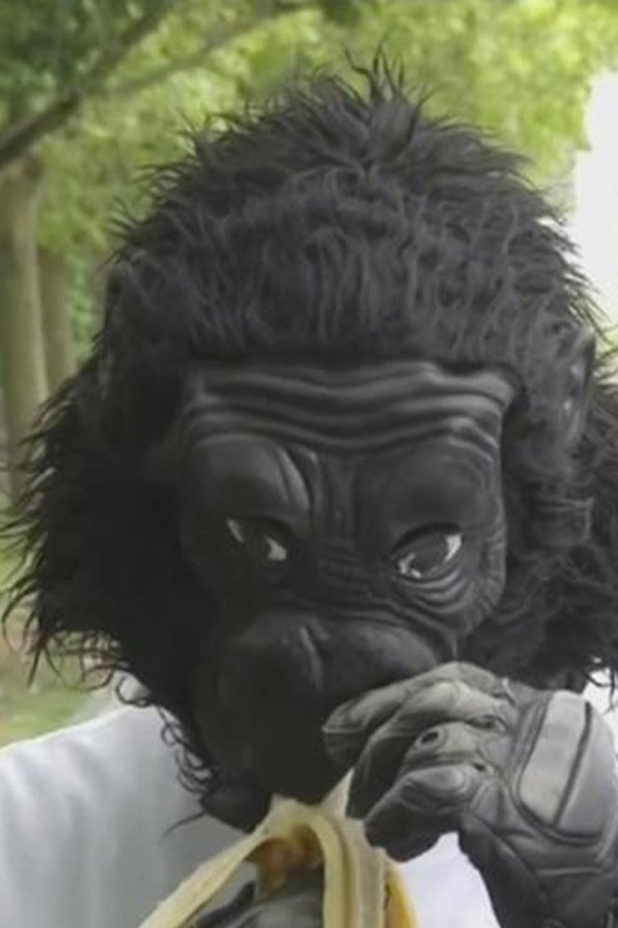 hombre vestido de gorila