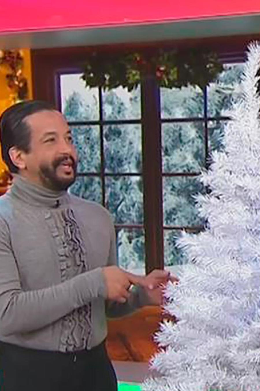 Te explicamos cómo escoger el árbol de Navidad perfecto para tu casa