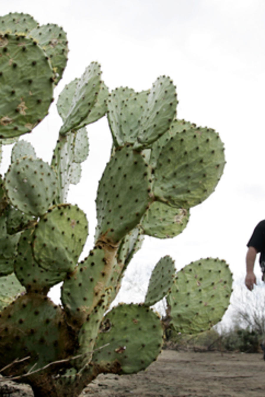 Uno de los integrantes de las milicias conocidas como Minuteman en el desierto de Arizona en una imagen de archivo