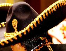 Al estilo de Jenni y Lupillo Rivera, Los Horóscopos de Durango, Chuy Lizárraga, Banda El Recodo entre otros.