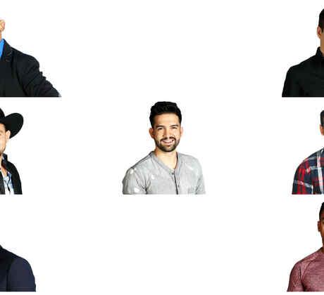 Collage de habitantes masculinos de Gran Hermano