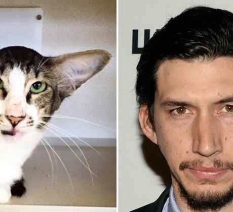 Corey y el actor Adam Driver.