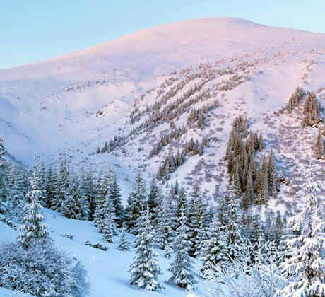 montana nevada