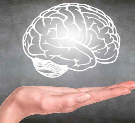 Cerebro dibujado en pizarrón sobre mano