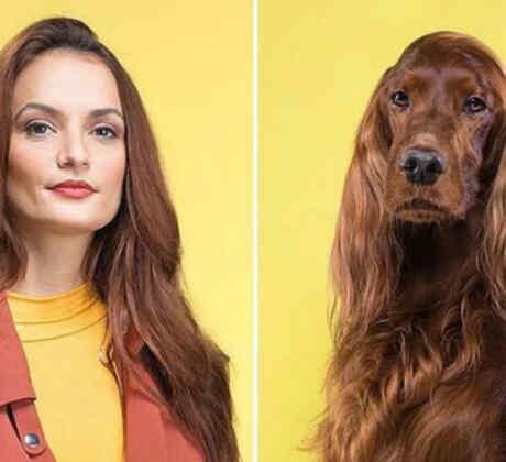 mascotas y sus dueños