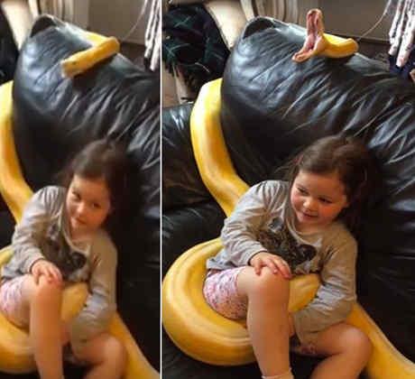 Deja a su hija en el sofá con una serpiente pitón y las imágenes causan indignación (VIDEO)
